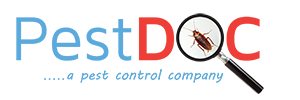Best pest Control Services Bangalore